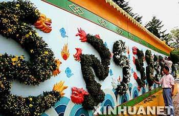 A Nine-Dragon Screen made from flowers was put on show on Sept., 26, 2007 at Labor Park in Dalian, northeast China's Liaoning Province. (Xinhua