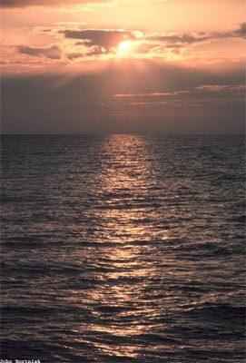 sun13-304647-1368811788_500x0.jpg
