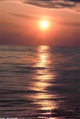 sun4-806959-1368811787_500x0.jpg
