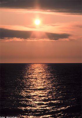sun6-430374-1368811787_500x0.jpg