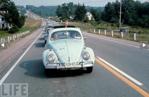 beetle3-1349160469_480x0.jpg