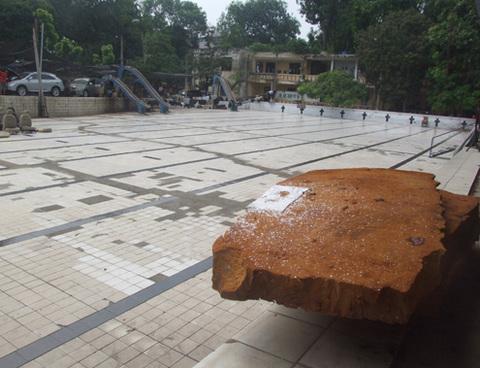 beboibokhong15-1349351798_480x0.jpg