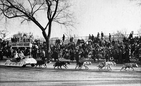 1961: When President John F. Kennedy was inaugurated, dogs were again part of the show. This time, Alaskan huskies pulled Maine's float along Constitution Avenue.