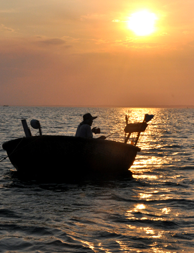 Từ lâu đời, nghề câu mực đêm ở vịnh Dung Quất là nghề truyền thống của ngư dân ở hai xã Bình Thạnh, Bình Đông, huyện Bình Sơn. Hàng ngày, khi hoàng hôn buông xuống cũng là lúc hàng trăm ghe máy nhỏ, thúng máy xuất phát từ cửa Sa Cần ra cách bờ khoảng 5 hải lý ở vùng biển vịnh Dung Quất bắt đầu câu mực đêm.