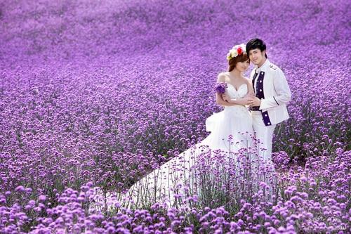 Tháng 7, thung lũng Y Lê đông nghẹt khách du lịch đến từ khắp nơi trong đất nước Trung Quốc và từ các đất nước khác. Họ đến Tân Cương vì hoa và vì cảnh sắc hùng vĩ đặc biệt của mảnh đất này.