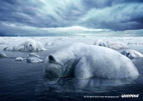 Bức poster mô tả cái chết gấu Bắc Cực vì sự nóng lên toàn cầu. Trên thực tế, những vùng biển chết như thế này không chỉ là viễn cảnh trong tương lai. Thống kê của Liên Hợp Quốc cho biết, trong vòng 5 năm từ 2003 - 2008, trên thế giới đã có 450 vùng biển không sự sống.    Mới đây nhất, cơ quan Quản lý đại dương và khí quyển Mỹ đã công bố một vùng biển có diện tích 22.000km2 ở vịnh Mexico, tương đương diện tích bang New Jersey sẽ trở thành một vùng biển chết do hệ quả của việc ô nhiễm đất nông nghiệp trầm trọng ở khu vực này.