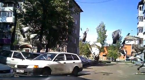 xe-5-1374892797_500x0.jpg