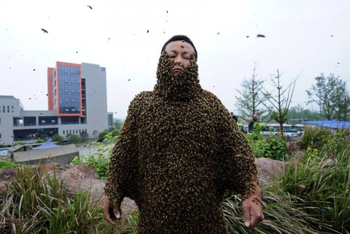 beekeeper-she-ping-in-china-covered-his-