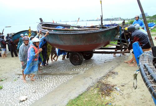 Được dự báo chịu bão số 8 sẽ đổ bộ vào đất liền tối nay, người dân Đà Nẵng bất chấp mưa to, gió lớn di chuyển tàu thuyền lên bờ, chằng chéo lại mái nhà hay mua thức ăn dự trữ...