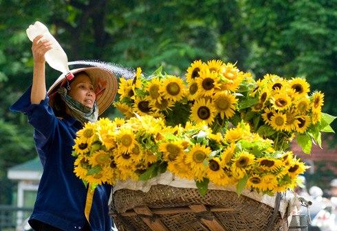 Nền nhiệt độ miền Bắc tăng vào ngày mai (27/9). Ảnh: Quang Xuan.