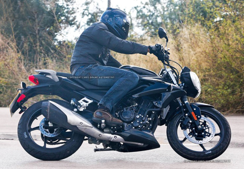 triumph-entry-level-motorcycle-2732-6216