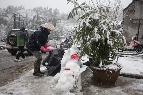 Hôm nay, cái rét âm 1 độ C khiến khu vực đèo Ô Quý Hồ (Sapa) và xã Ý Tý (Bát Xát) đã xuất hiện mưa tuyết khá dày.