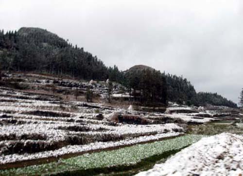 Tuyết rơi dày ở Đồng Văn