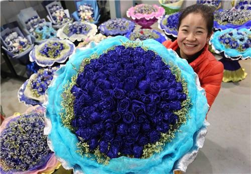 A florist in Xuchang City in central China's Henan Province prepares blue rose bouquets on February 9, 2014, for the upcoming Valentine's Day which falls on February 14, which this year coincides with China's traditional Lantern Festival. [Henan Women's Federation / Geng Guoqing]