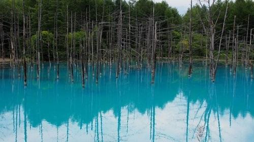 Blue-Pond-in-Hokkaido-550x309-7974-13947