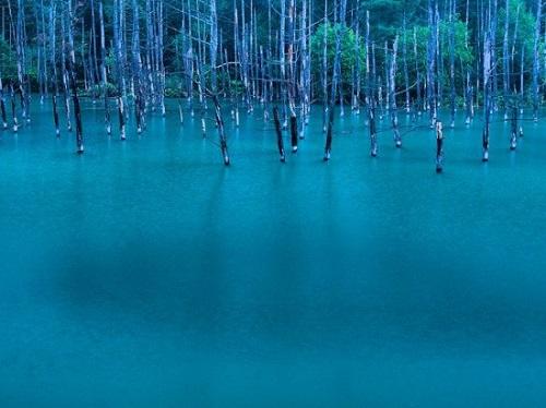 Blue-Pond-in-Hokkaido4-550x412-6102-1394