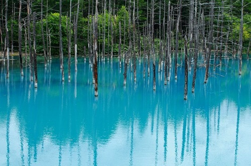 blue-pond-39-5105-1394773764.jpg