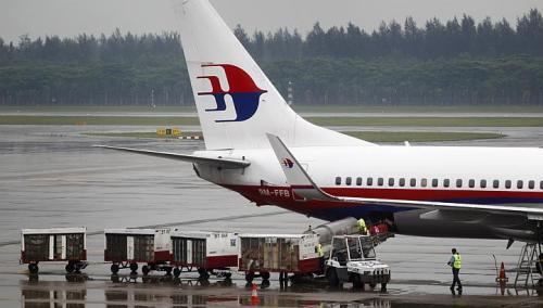 Máy bay Malaysia Airlines bị đàn vịt đâm vỡ kính