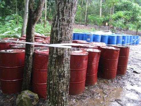 Trong khuôn viên xưởng sản xuất của Nicotex Thanh Thái, có hàng trăm phuy đựng hóa chất không nhãn mác để phơi mưa nắng, một số bị bục đáy rỉ ra chất bột trắng sặc mùi thuốc sâu. Ảnh: Lê Hoàng