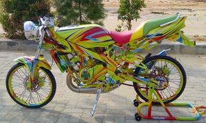 Kawasaki Ninja - tắc kè hoa ngộ nghĩnh