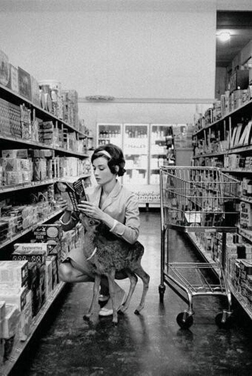 Audrey Hepburn (nữ diễn viên xinh đẹp đóng phim Breakfast at Tiffany's) đi shopping cùng chú nai bạn thân ở Beverly Hills năm 1958. Nữ diễn viên xinh đẹp luôn là tâm điểm thu hút mọi ánh nhìn với sự duyên dáng và thanh lịch của mình.