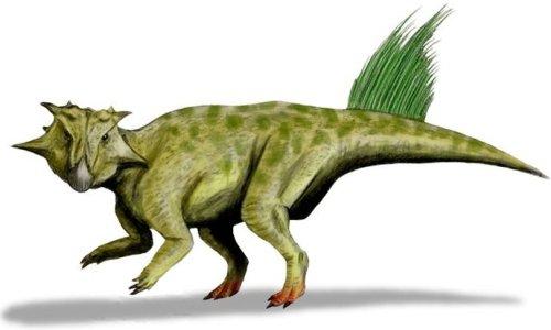 9Psittacosaurus-sibiricus-whol-1946-2177