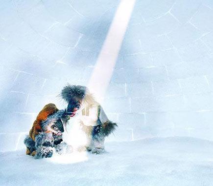Cá Eskimo cũng có luôn