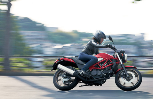 Honda-VTR-Type-LD.jpg