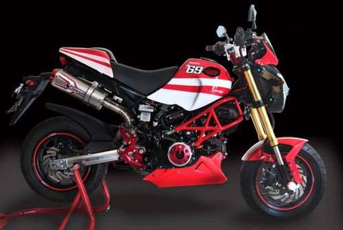 Gromcati-Ducati-Monster-Honda-1563-4007-