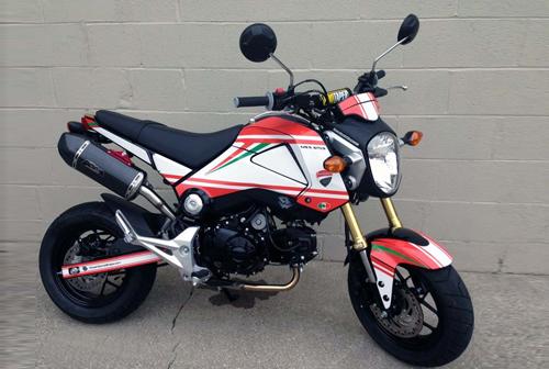 Gromcati-Ducati-Monster-Honda-8582-3134-