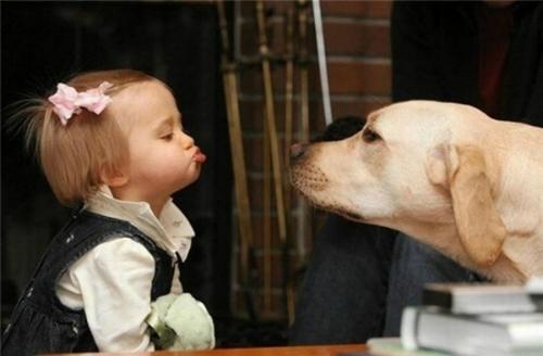 Không thèm vào hôn mày nha chó.