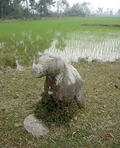 Chó đá