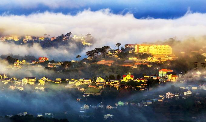 Bồng bềnh sương sớm Đà Lạt