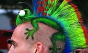Những kiểu tóc bá đạo nhất hành tinh