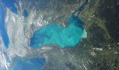 Nước hồ biến thành 'thạch' vì ô nhiễm