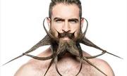 Những bộ râu chất nhất quả đất