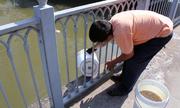 Kênh Nhiêu Lộc có nguy cơ ô nhiễm lại
