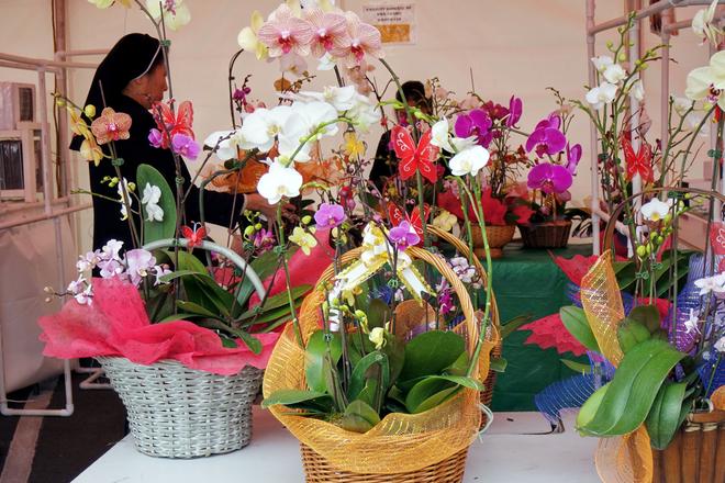"""<p class=""""Normal"""">  Một số đoàn thể cũng góp mặt với các gian hàng bán hoa để gây quỹ từ thiện.</p>"""