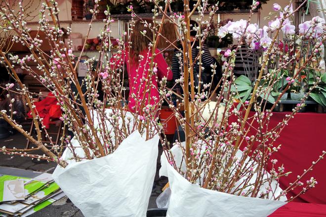 <p>  Những cành đào chi chít nụ là một trong những mặt hàng được nhiều khách ưa chuộng nhất. Khách mua mất khoảng 20 USD cho mỗi bó với 4 hoặc 5 cành và khoảng 125 USD cho một cây đào trồng trong chậu.</p>