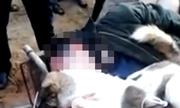 Nghi can trộm chó bị đánh bất tỉnh