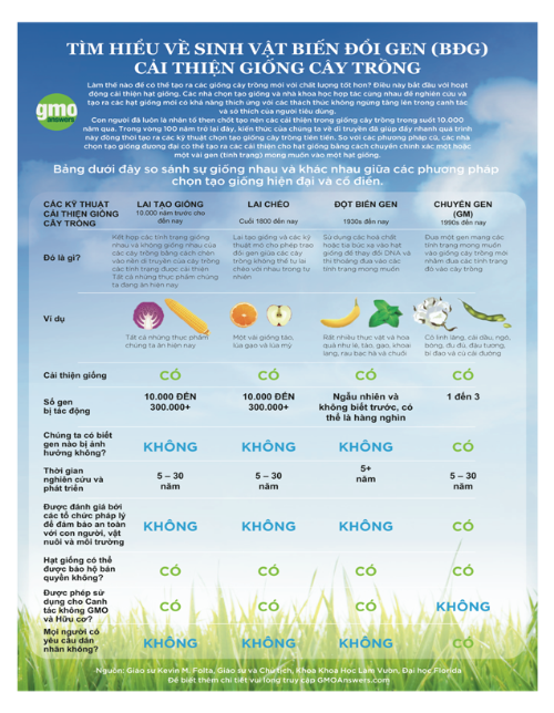Việt Nam - quốc gia thứ 29 trồng cây biến đổi gen