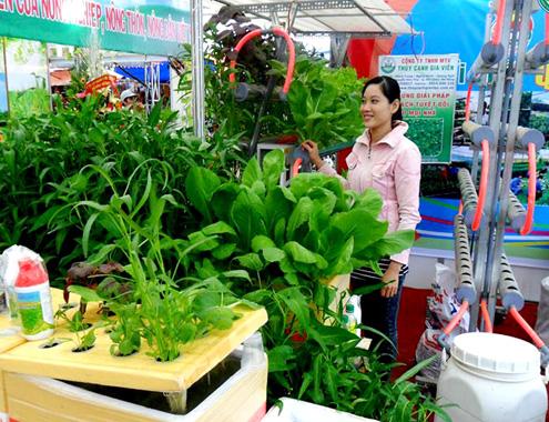 27-5-Anh-9-Cao-rau-sach_1432698699.jpg