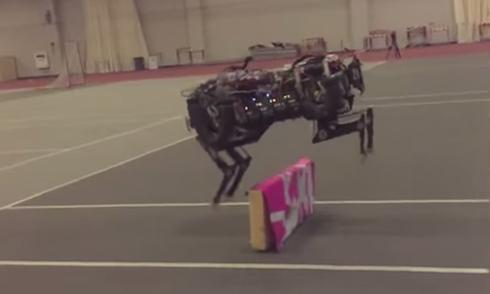 Báo robot chạy vượt chướng ngại vật