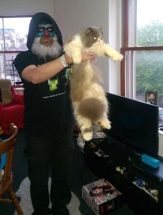 Hù dọa lại mèo.