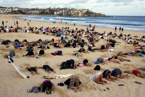 Tất cả mọi ng đều cúi đầu xuống cát.
