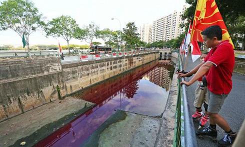 Nước kênh Singapore chuyển màu đỏ quạch