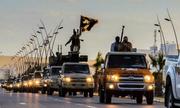 Cựu thành viên IS sắp tiết lộ hoạt động nội bộ của nhóm