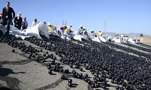 Los Angeles thả 96 triệu bóng nhựa xuống hồ ngăn nước bốc hơi