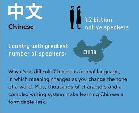 chinese-7803-1440152966.jpg