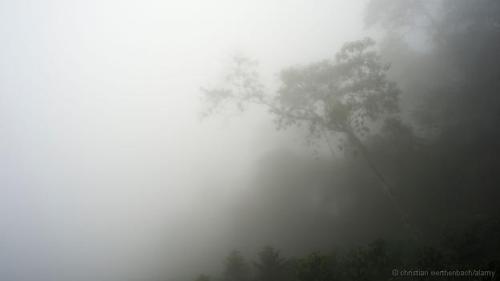 Nơi ẩm ướt nhất Trái Đất